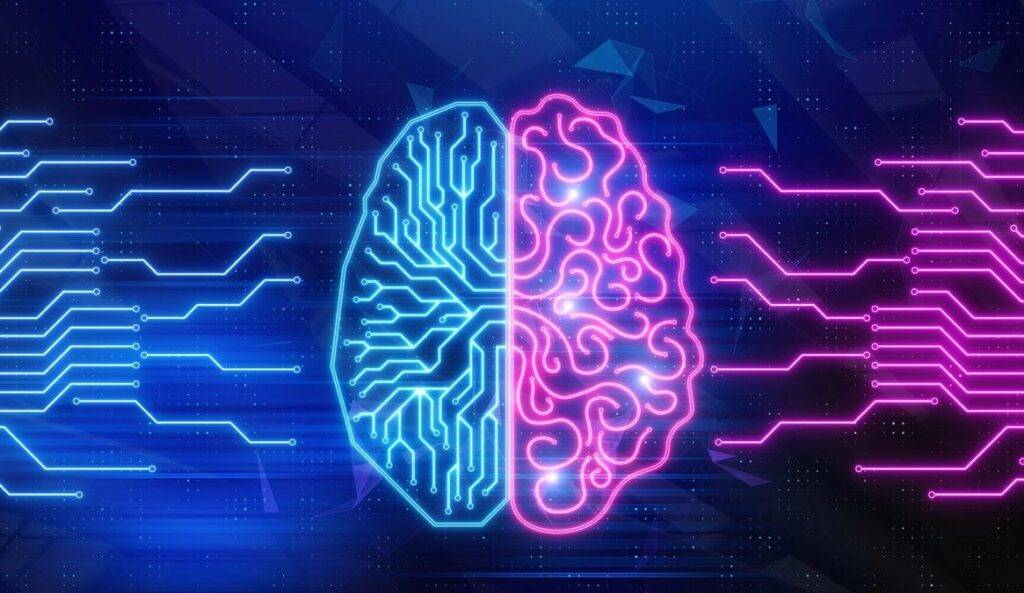 Levá a pravá hemisféra